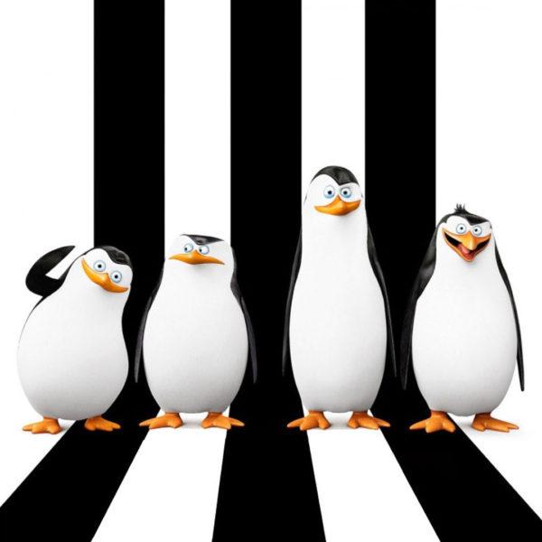 IMAGES—SQUARES—PENGUINS